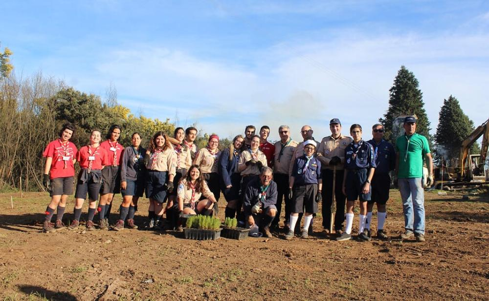 Este projeto visa plantar 15.000 árvores autóctones.